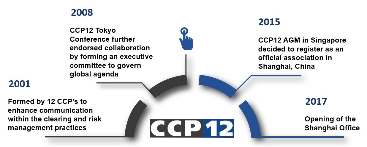 CCP12 History
